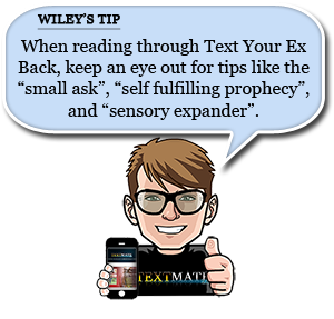 Wiley Tip Text Your Ex Back Examples